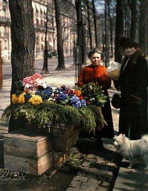 aime les fleurs