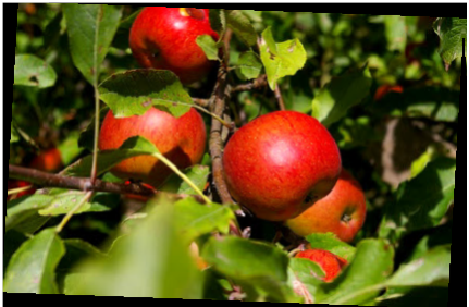 deva de la pomme