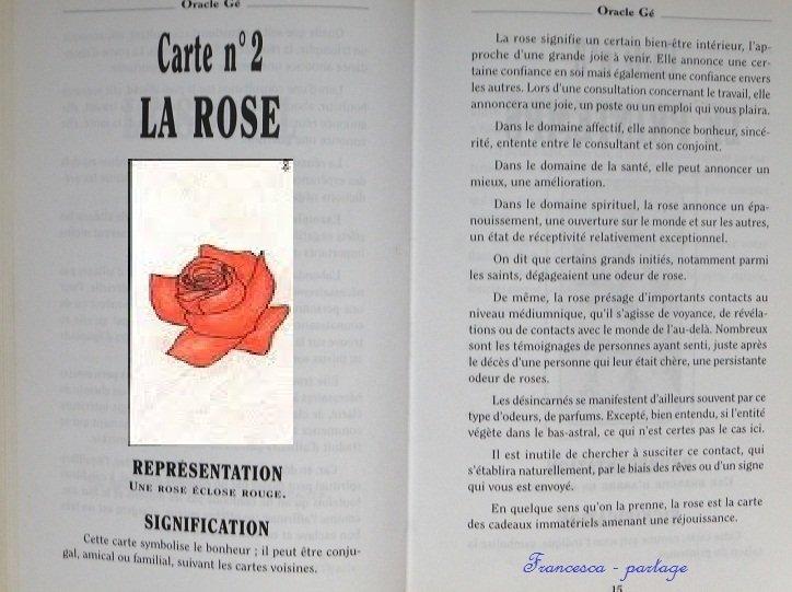 rose chez francesca